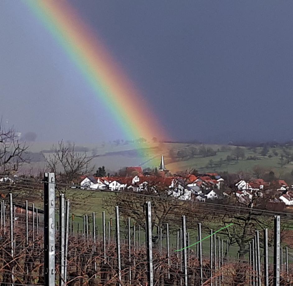 Regenbogengemeinde Waldbach-Dimbach